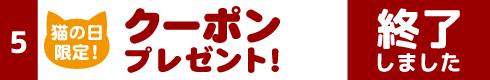[5]猫の日限定!クーポンプレゼント!